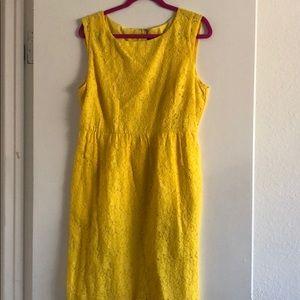 J.Crew Factory Yellow Eyelet Lace Dress 12